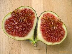 Fichi-si-tratta-di-un-falso-frutto